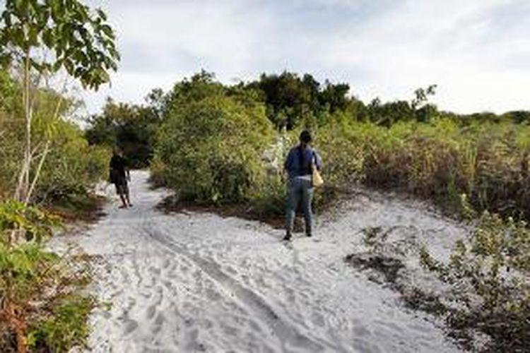 Cagar Alam Kersik (padang) luway di Kecamatan Seqolak Darat, Kabupaten Kutai Barat, Kalimantan Timur, Selasa (5/11/2013). Selain keunikan pasir putihnya, di cagar alam ini hidup lebih dari 47 jenis anggrek, salah satunya anggrek hitam (Coelogyne pandurata).