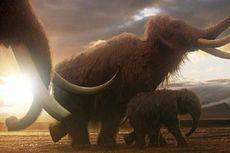 Ingin Hidupkan Mammoth, Rusia Buat Fasilitas Kloning ala Jurassic Park