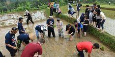 Lima Investor Bakal Bangun Kampung Wisata di Purwakarta