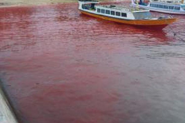 Air laut di Pulau Ai, Kepulauan Banda, Kabupaten Maluku Tengah tampak berubah seperti darah. fenomena ini pun menggemparkan warga di Pulau itu, Minggu (21/6/2015)