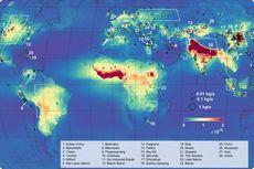 Terlihat dari Luar Angkasa, Kotoran Hewan Telah Menyelimuti Bumi