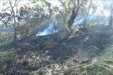 Belasan Hektar Lahan di Pulau Battoa Terbakar