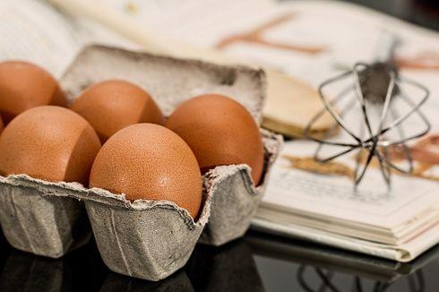 Telur Punya Segudang Manfaat untuk Ibu Hamil dan Menyusui