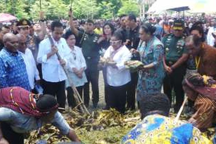 Presiden Joko Widodo dan Ibu Negara Iriana disuguhi masakan bakar batu di Yahukimo, Papua, Selasa (18/10/2016).