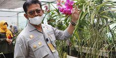 Mentan SYL Optimistis Indonesia Jadi Eksportir Besar Tanaman Tropis