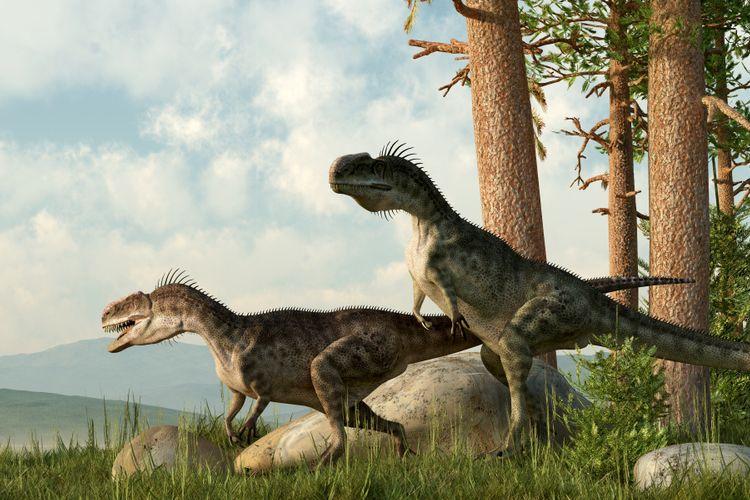 Zaman Mesozoikum Pembagian Ciri Ciri Dan Peninggalan Halaman All Kompas Com