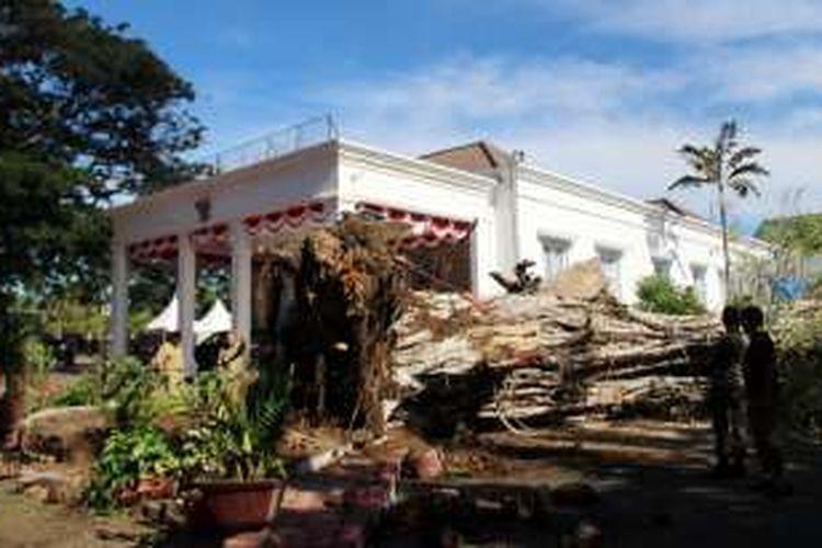 Pohon asam jawa yang menyatu dengan beringin tumbang di samping rumah dinas gubernur Gorontalo, Senin (10/10/2016). Pohon berdiameter 2 meter itu diperkirakan berumur ratusan tahun.