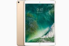 iPad Pro Generasi Berikutnya Disebut Tak Punya Colokan Earphone