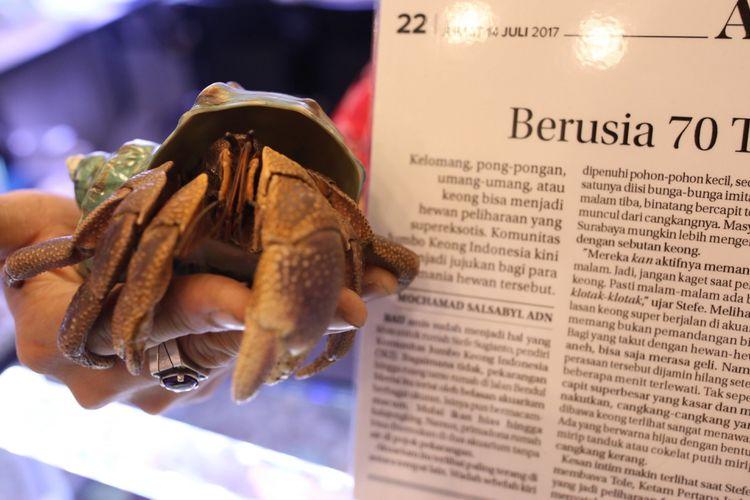 Tole, keong berusia 70 tahun di Indo Pet Expo