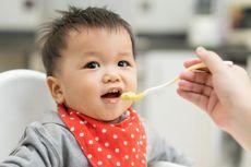 Protein Hewani Harus Ada dalam Makanan Pendamping ASI