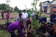 Bambu Bali Memperindah Taman Harmoni Surabaya, Risma Senang