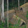 Virus Corona Bisa Musnahkan Masyarakat Adat Amazon, Ahli Peringatkan