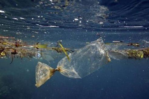 Lindungi Laut, Uni Eropa Akan Larang Penggunaan Plastik Sekali Pakai