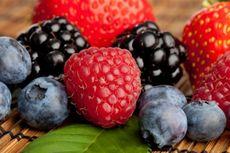 Buah Berries, Mungil tapi Khasiatnya Tinggi