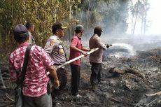 Sepanjang Januari 2020, 9 Orang Pelaku Karhutla di Riau Ditangkap