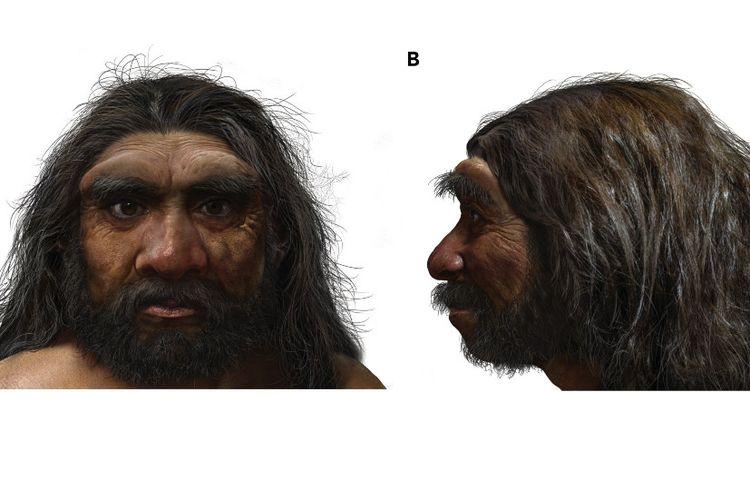 Hasil rekonstruksi dari komputer yang dilakukan para peneliti terhadap tengkorak Manusia Naga yang ditemukan di China