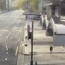 Australia Lockdown, Kangguru Lompat-lompat Jelajahi Kota