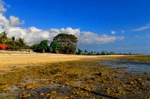 Pantai Lakey, Memburu Ombak Kidal di Dompu