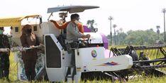 PDB Pertanian Naik di Triwulan I, Kementan Prediksi Kenaikan Berlanjut Hingga 2021