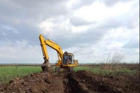 BUMN Klaster Pangan Garap Food Estate Sukamandi Seluas 1.000 Hektar