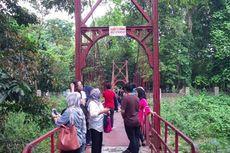 Seberapa Besar Nilai Ekonomi Kebun Raya Bogor?