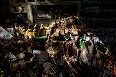 Dianggap Penyebab Virus Corona, China Bakal Keluarkan Larangan Konsumsi Hewan Liar