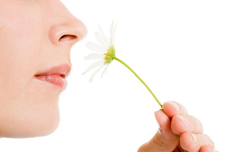 Ilustrasi mencium bau