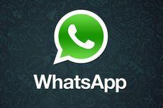 2 Fitur Baru WhatsApp untuk Pengguna iPhone