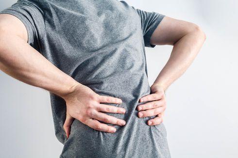 Benarkah Kurang Minum Bisa Menyebabkan Sakit Pinggang?
