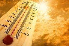 Suhu Panas di Belanda, Belgia, dan Jerman Lewati 40 Derajat Celsius