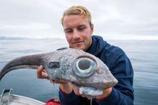 Sedang Memancing, Pria Ini Dapatkan Ikan Bermata Besar