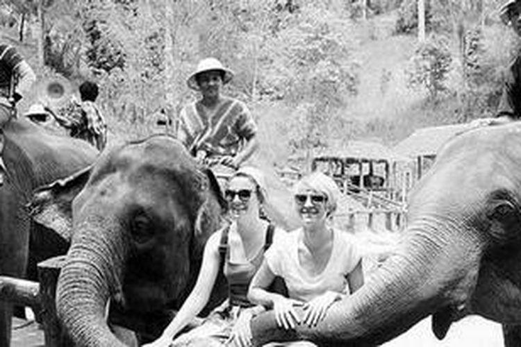 Wisatawan berpose dengan gajah-gajah terlatih di Maesa Elephant Camp, Chiangmai, Thailand, akhir bulan lalu. Di kamp ini, gajah dilatih agar mahir beratraksi dan menghibur wisatawan .