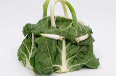 Intip Tas Hermes Birkin dari Bahan Sayuran