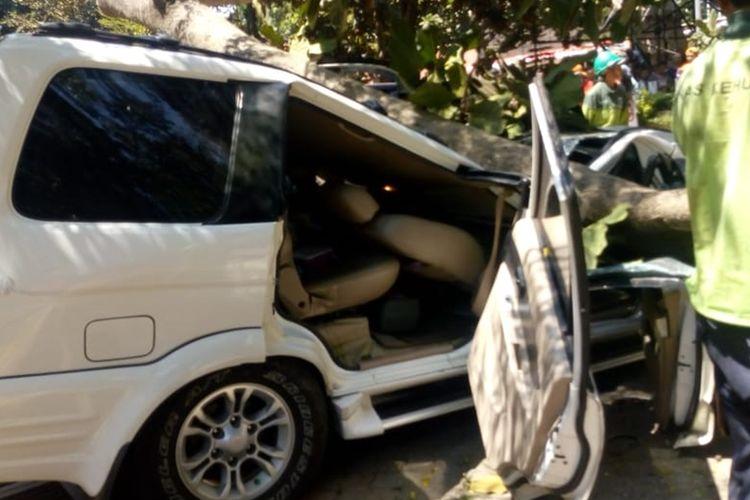 Sebuah mobil tertimpa pohon saat sedang terparkir di halaman Universitas Pancasila, Rabu (21/8/2019).