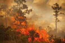 Dua Desa di Riau Ini Jadi Langganan Karhutla Tiap Musim Kemarau