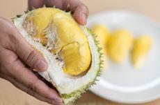 Makan Durian Saat Hamil? Ini yang Perlu Kamu Tahu...