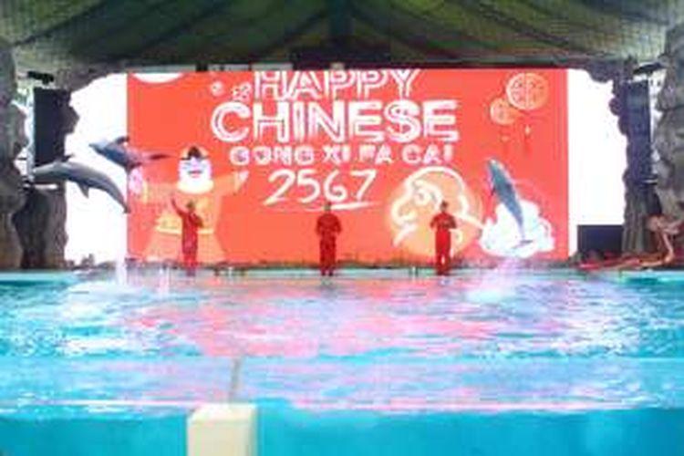 Panggung Gelanggang Samudra yang menampilkan pertunjukan lumba-lumba bersma barongsai menjelang Imlek 2016.