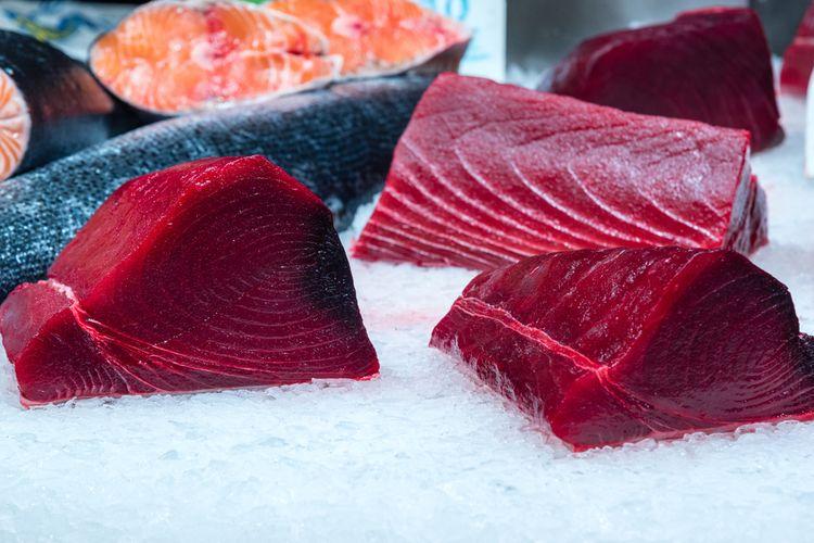 Ilustrasi potongan filet ikan tuna