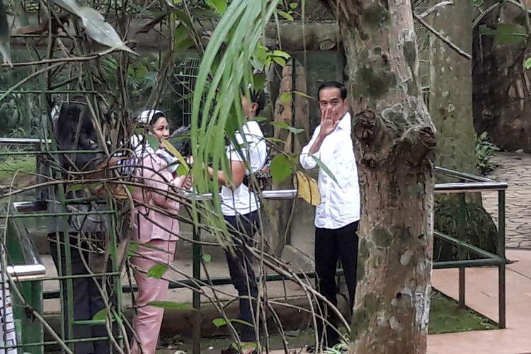 Presiden Joko Widodo beserta keluarga berlibur di Pusat Primata Schmutzer di Kebun Binatang Ragunan, Jakarta Selatan, Kamis (29/6/2017).
