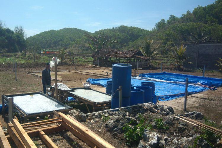 Produksi Garam di Pantai Sepanjang, Tanjungsari, Gunungkidul