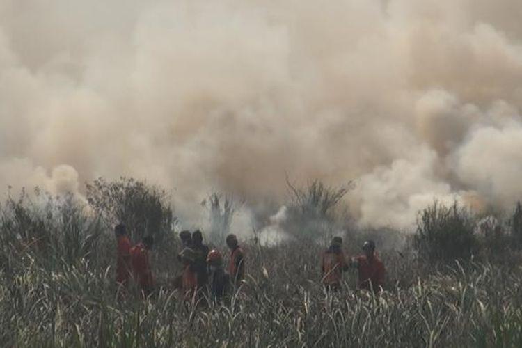 Kebakaran lahan gambut terjadi di sisi jalan lintas timur Palembang-Ogan Ilir Rabu siang menciptakan asap tebal membumbung tinggi ke udara