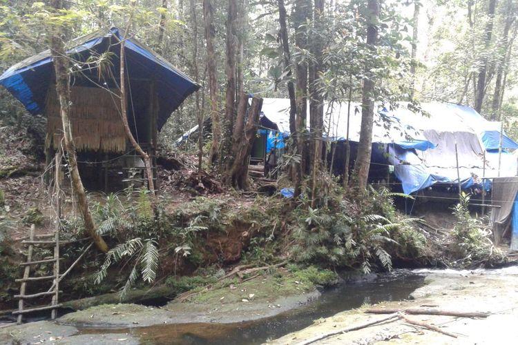 Camp Mayang, stasiun monitoring untuk pengamatan aktivitas & perilaku orangutan dan fauna lainnya.