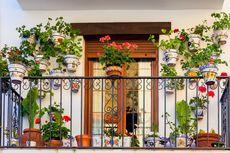 4 Tips Menata Tanaman di Balkon agar Tampak Cantik dan Rapi