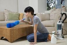 Agar Rumah Sehat, Simak 4 Cara Basmi Tungau Debu