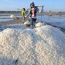 Ini Tanggapan Peneliti UGM Terkait Rencana Kebijakan Impor Garam