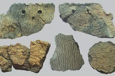 Sisa Makanan Ungkap Penggunaan Tembikar Kuno Zaman Es di Asia Timur