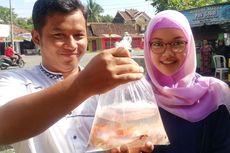 Menyaksikan Tradisi Melepas Benih Ikan dan Menanam Pohon Para Pengantin di Kulon Progo