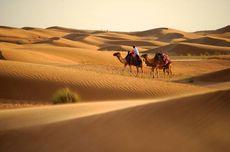 Suhu Panas, 7 Tips Traveling di Tempat Bersuhu Ekstrem