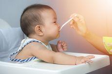 Panduan Pemberian MPASI untuk Bayi yang Punya Alergi