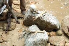 Kronologi Ditemukannya Kerangka Manusia di Hutan Probolinggo, Berawal dari Warga Bersihkan Lahan